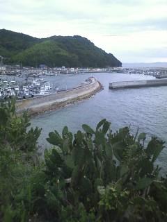 走島の風景