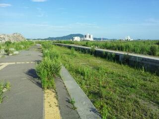 陸前高田市内を歩く