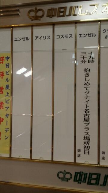 2014大相撲名古屋場所初日を観戦&「抱きしめてツナイト 名古屋プラス
