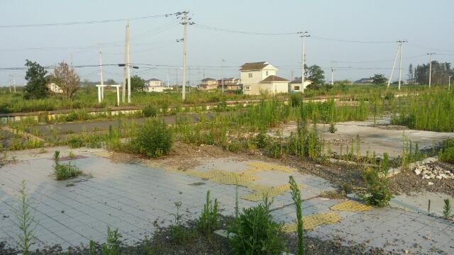 2014年夏 常磐線山下駅