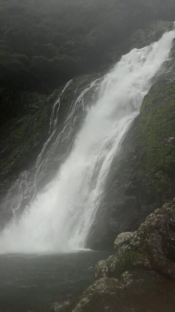 2016年夏・屋久島 ~その2~トローキの滝・大川の滝・屋久島温泉